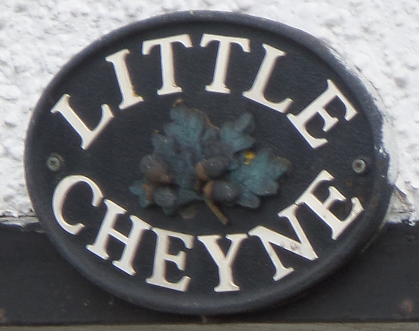 Little Cheyne